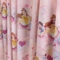 Pink Disney Princess curtain